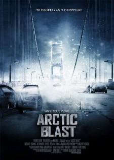 Affiche du film Menace arctique