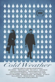 Affiche du film Cold Weather
