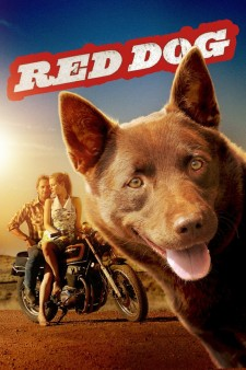 Affiche du film Red Dog