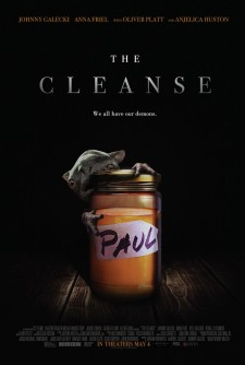The Cleanse