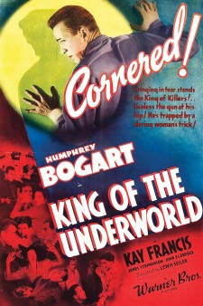 Affiche du film King of the Underworld