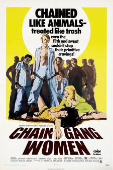 Affiche du film Chain Gang Women