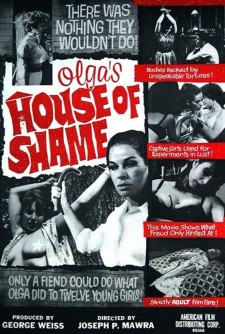 Affiche du film Olga's House of Shame