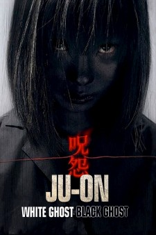 Affiche du film The Grudge : Girl in Black