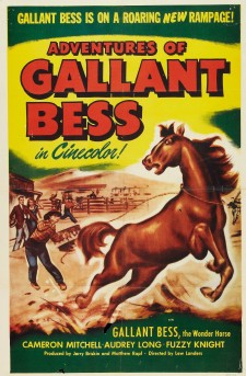 Affiche du film Adventures of Gallant Bess