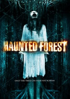 Affiche du film Haunted Forest