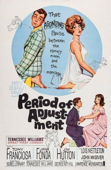 Affiche du film Period of Adjustment