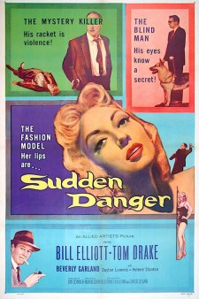 Affiche du film Sudden Danger