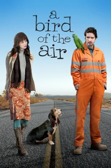 Affiche du film A Bird of the Air