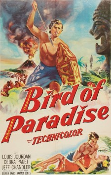 affiche du film Bird of Paradise