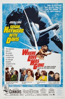 Affiche du film Where Love Has Gone