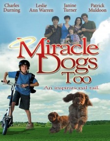 Affiche du film Miracle Dogs Too