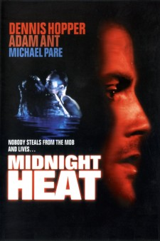 Affiche du film Sunset Heat