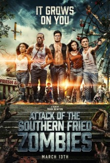 Affiche du film Attack of the Southern Fried Zombies