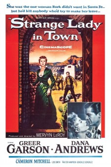 Affiche du film Strange Lady In Town