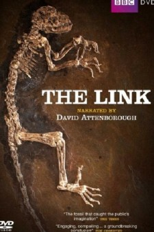 Affiche du film Uncovering Our Earliest Ancestor: The Link