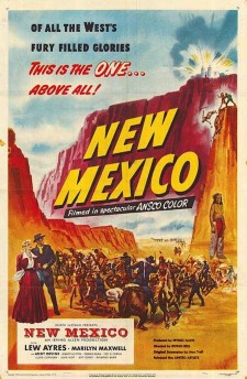 Affiche du film New Mexico