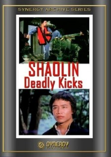 Affiche du film Shaolin Deadly Kicks