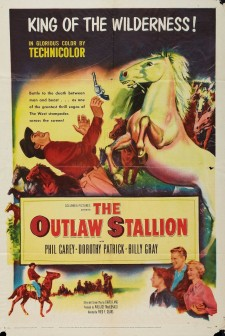 The Outlaw Stallion