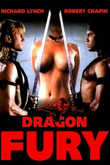 Affiche du film Dragon Fury