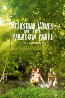 Affiche du film Celestial Wives of the Meadow Mari