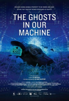 Affiche du film The Ghosts in Our Machine