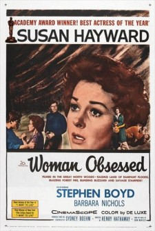 Affiche du film Woman Obsessed
