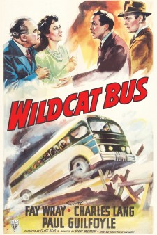 Wildcat Bus