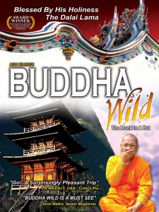Affiche du film Buddha Wild: Monk in a Hut