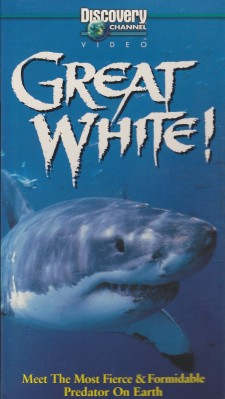 Affiche du film Great White!: Meet The Most Fierce & Formidable Predator On Earth
