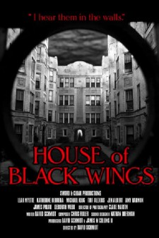 Affiche du film House of Black Wings