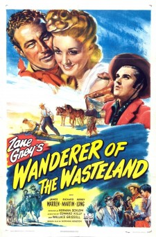 Affiche du film Wanderer of the Wasteland