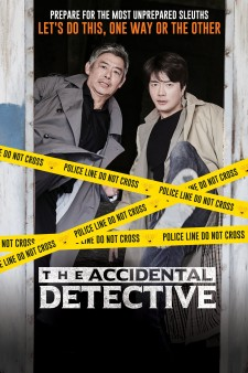 Affiche du film The Accidental Detective