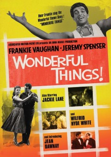 Affiche du film Wonderful Things!