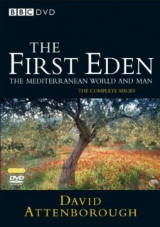 Affiche du film The First Eden