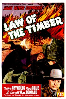 Affiche du film Law of the Timber