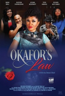 Affiche du film Okafor's Law