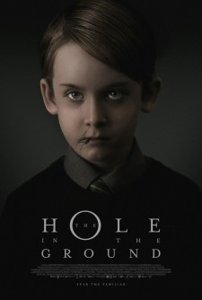 Affiche du film The Hole in the Ground