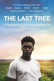 Affiche du film The Last Tree