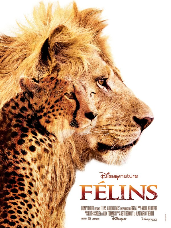 Affiche du film Félins, le royaume du courage
