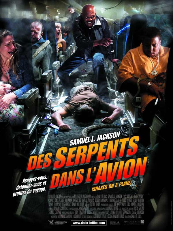 Affiche du film Des serpents dans l'avion