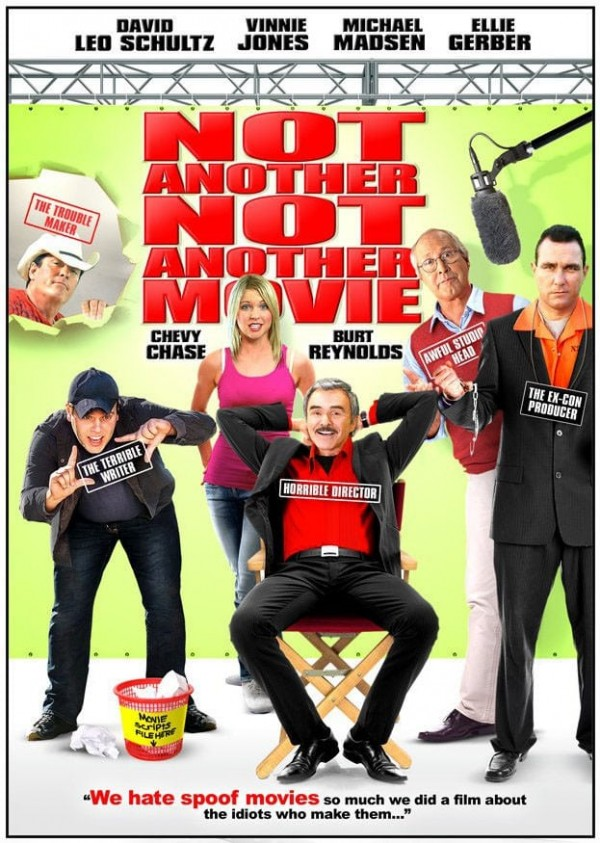 Affiche du film Not Another Not Another Movie