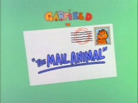 The Mail Animal