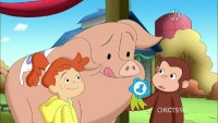 Curious George, Hog Trainer