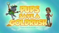 Pups Save a Goldrush