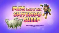 Pups Save the Shivering Sheep
