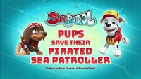 Sea Patrol: Pups Save the Pirated Sea Patroller