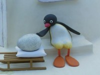 Pingu and the Mix Up