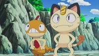 Meowth's Scrafty Tactics!
