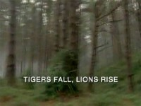 Tigers Fall, Lions Rise